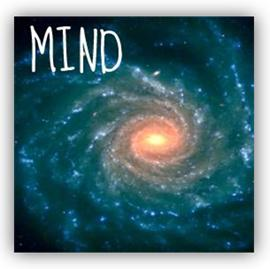 Mind Introduction Article Image